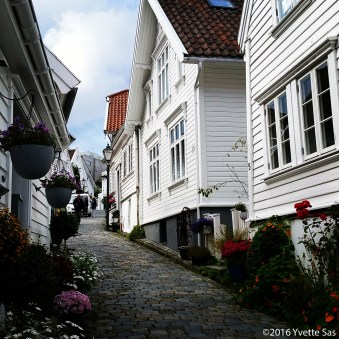 I could keep walking in the cute streets of Norway