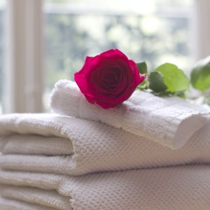 A Towel In The Shower
