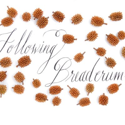 Why Follow Breadcrumbs?