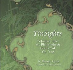 YinSights