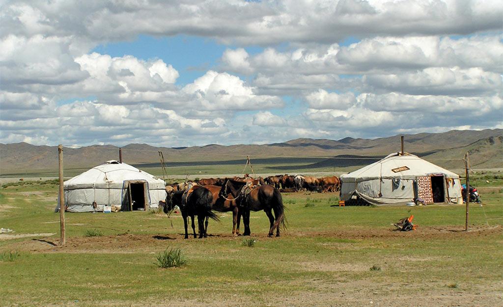 Mongolie Reisverslag