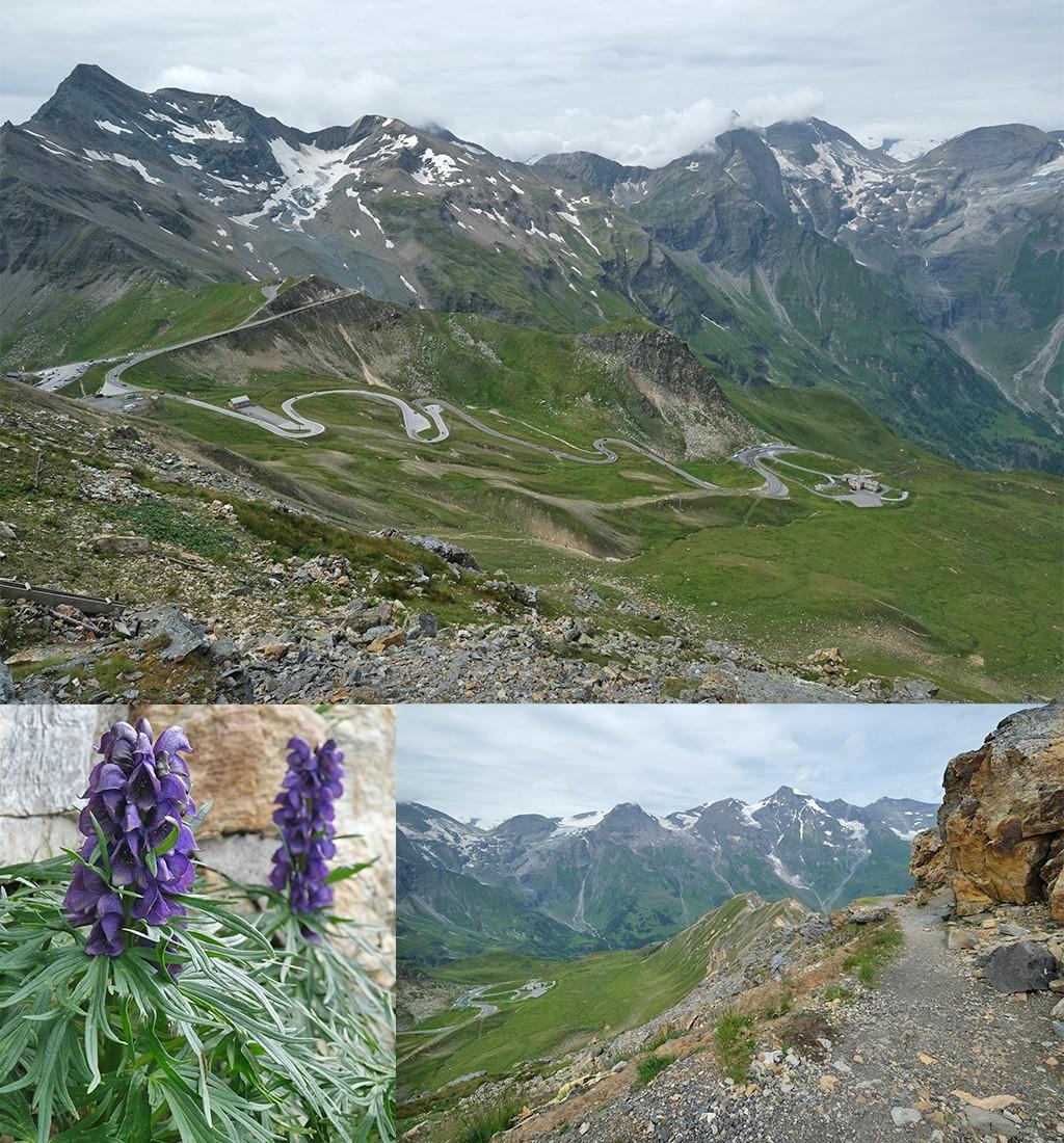 Edelweisspitze geweldig uitzicht over de Alpen