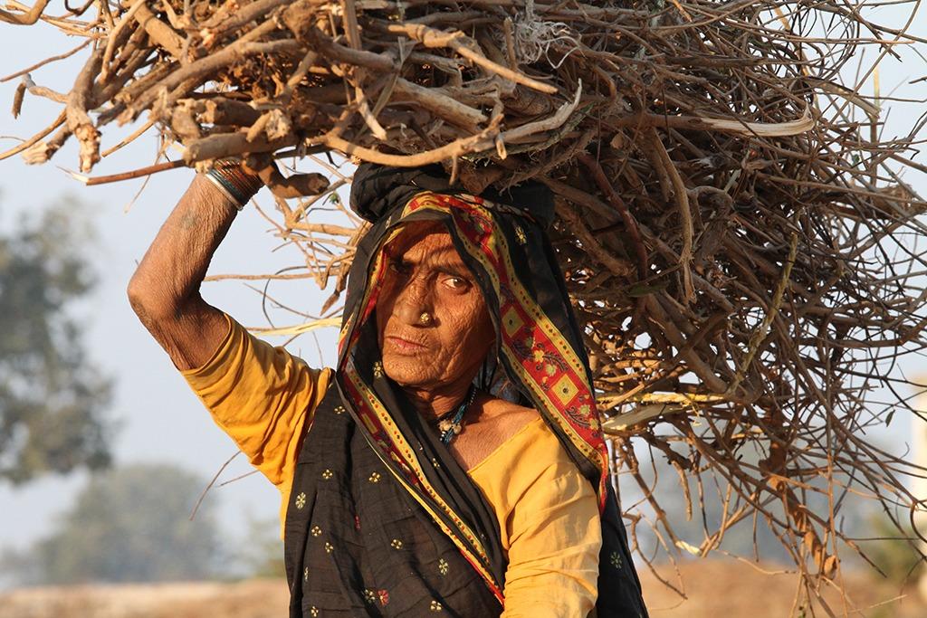 Veel vrouwen in India verzamelen dagelijks hout voor het vuur