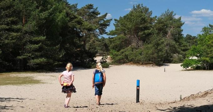 wandelen op de Utrechtse Heuvelrug - korte routes