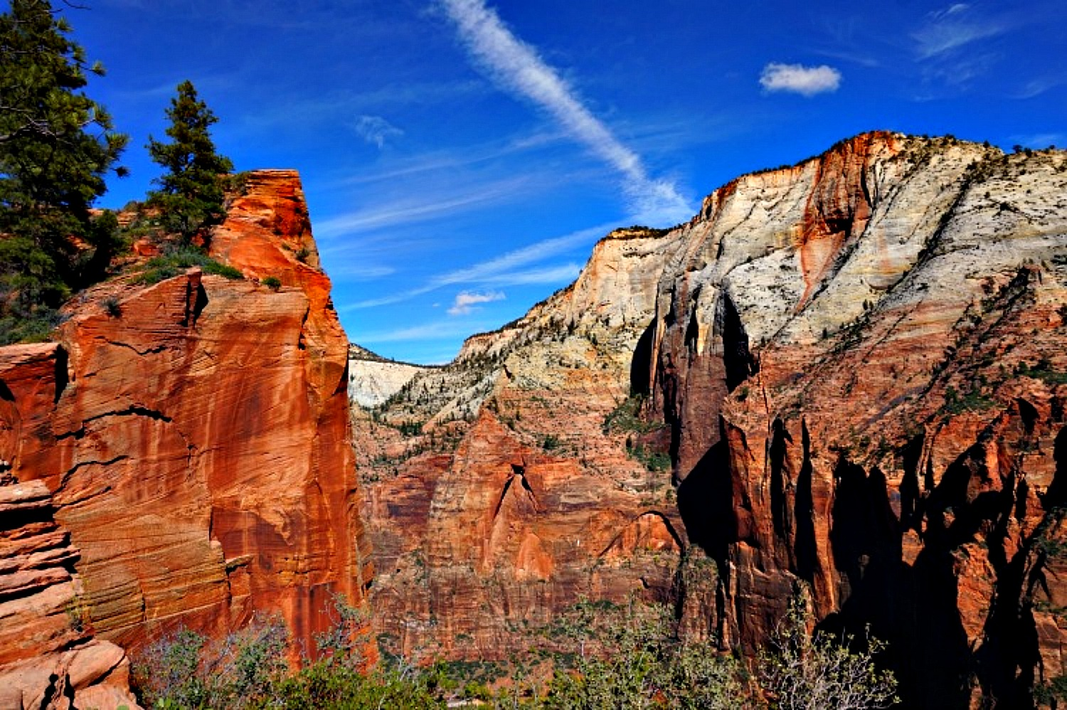 Why Utah is the Best State for Nature Lovers. Red rock vista in Zion National Park.