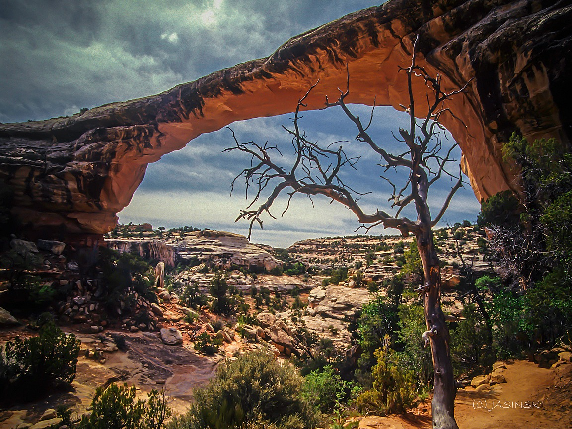 Why Utah Is the Best State for Nature Lovers. Hickaman Bridge at Capitol Reel National Park.