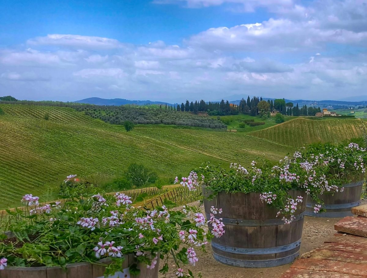 Tuscany countryside in spring.