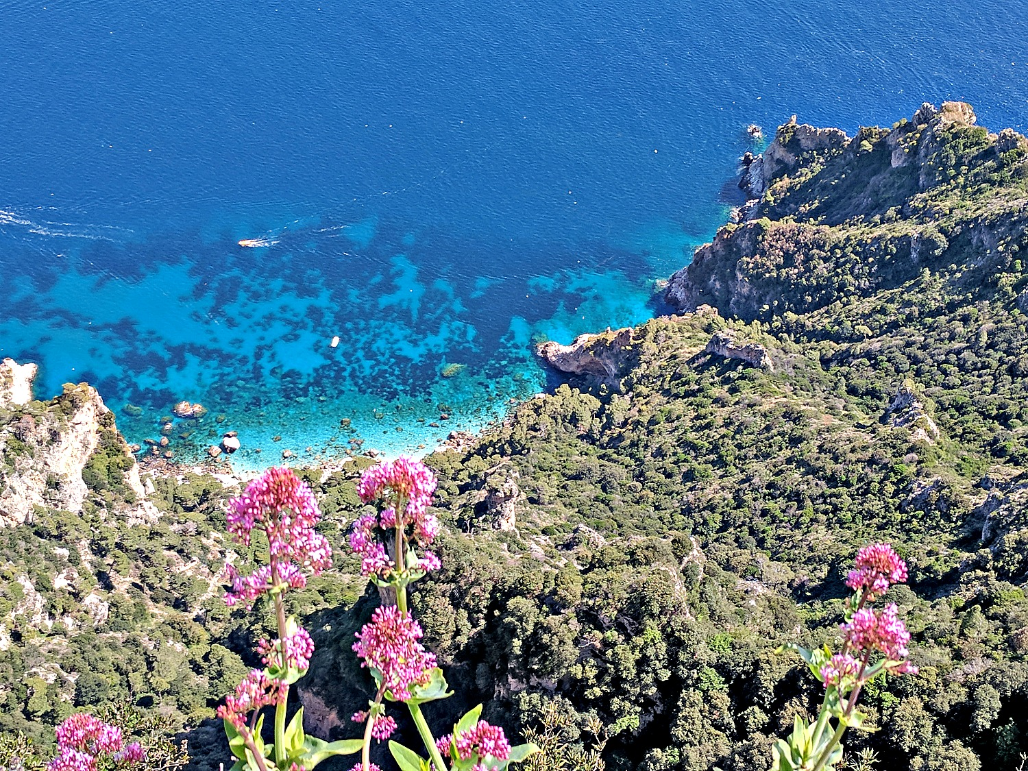 View of the coast below in Capri Italy.