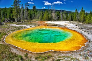 Morning Glory Pool in Yellowstone.