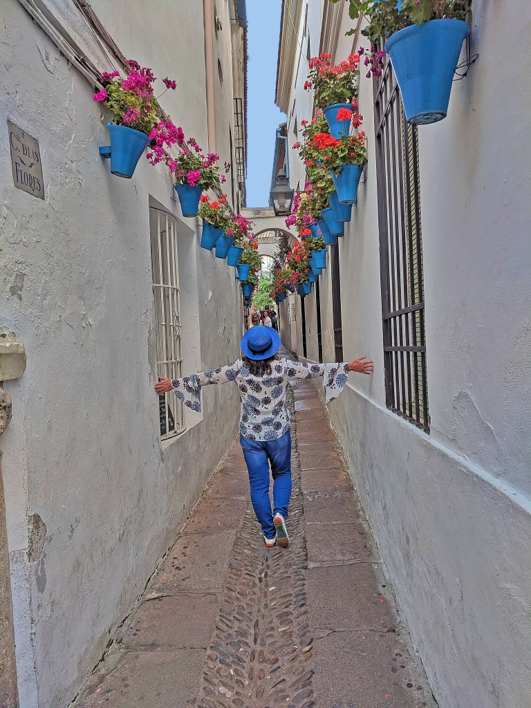 Charming narrow street of Cordoba with blue flowerpots.