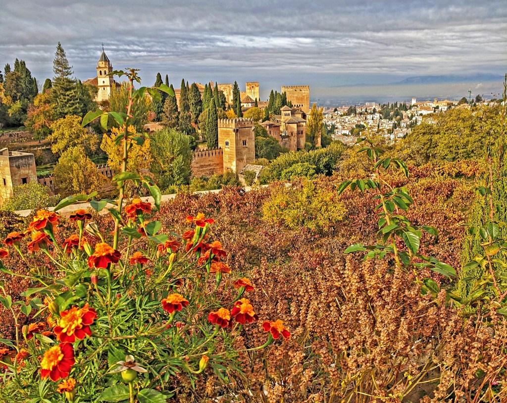 Views of Granada from Alhambra.