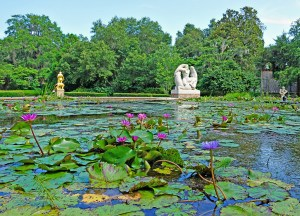 Myrtle Beach - things to do. Beautiful lily pond at Brookgreen Gardens.