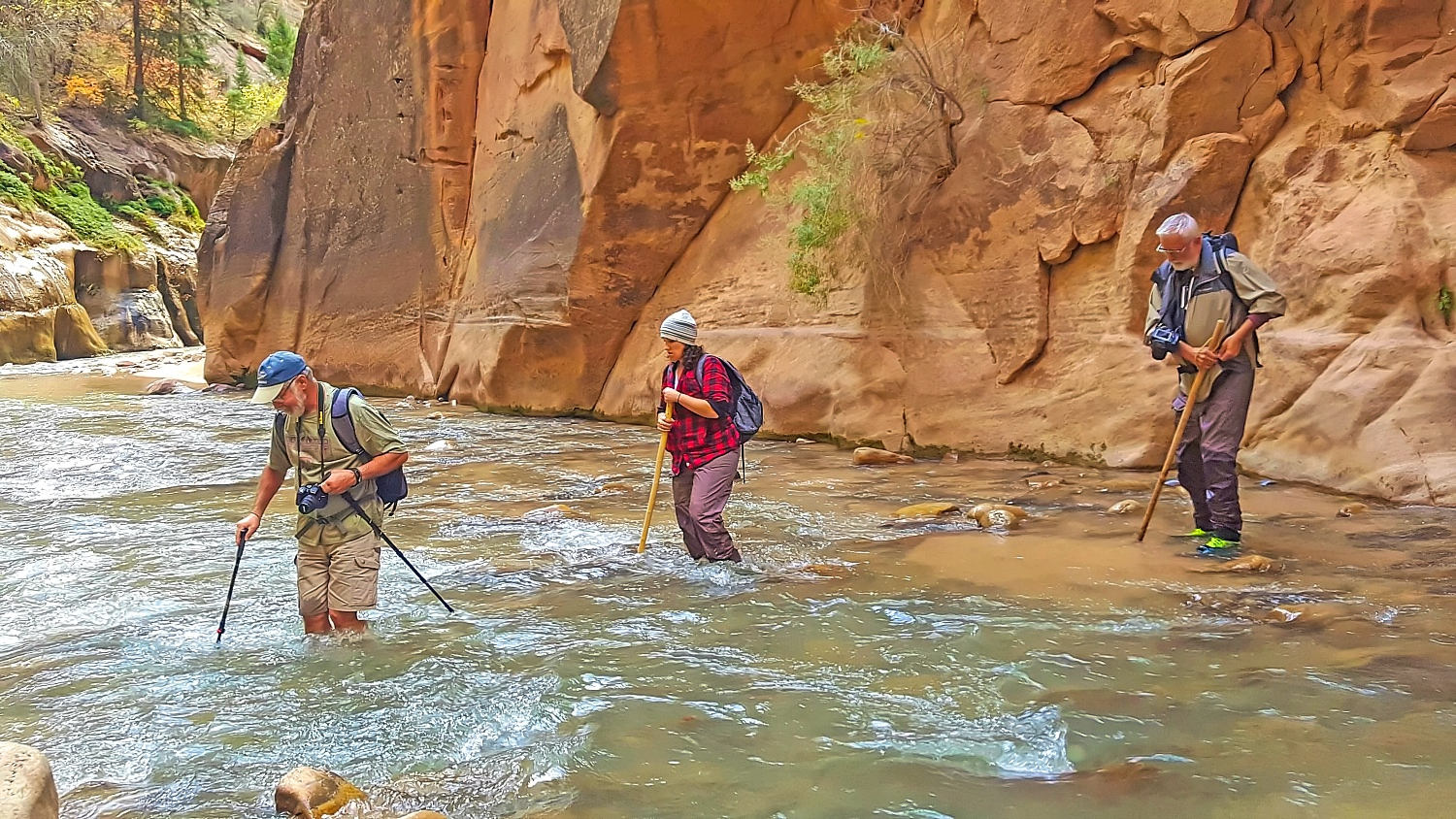 The Narrows In Zion National Park requires hiking in the river.