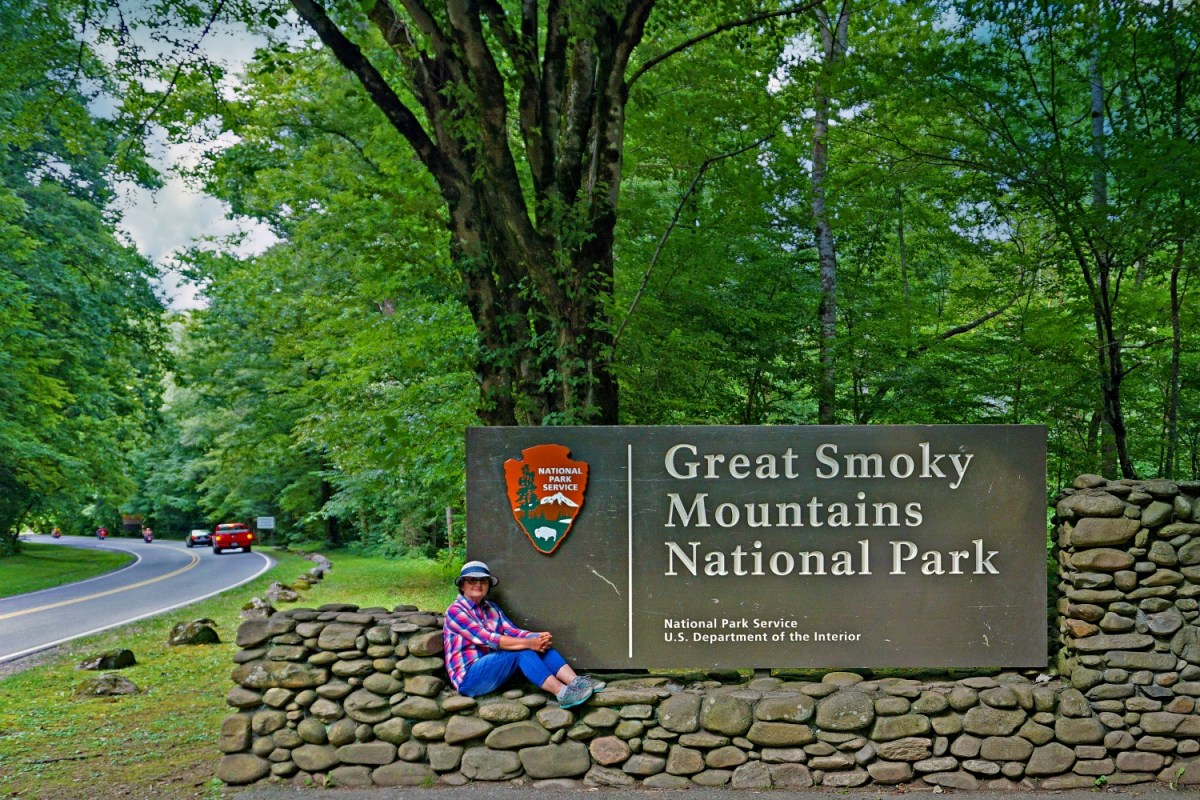 Welcome to the Great Smoky Mountains National Park in spring.