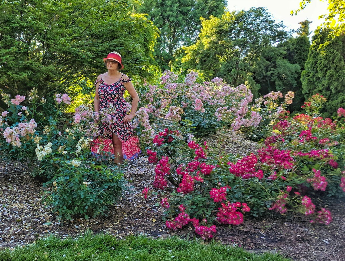 Rose garden at Grounds For Sculpture.