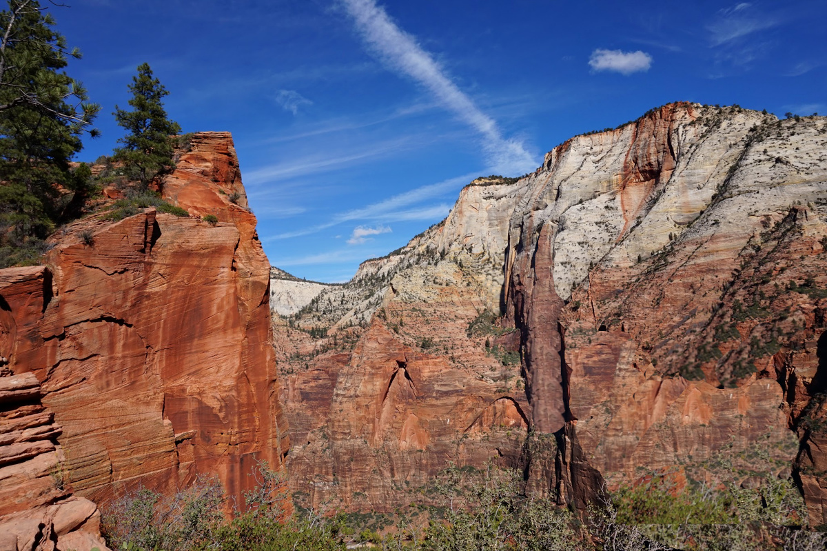 Zion National Park. Red cliff visible from Angels Landing hiking trail.