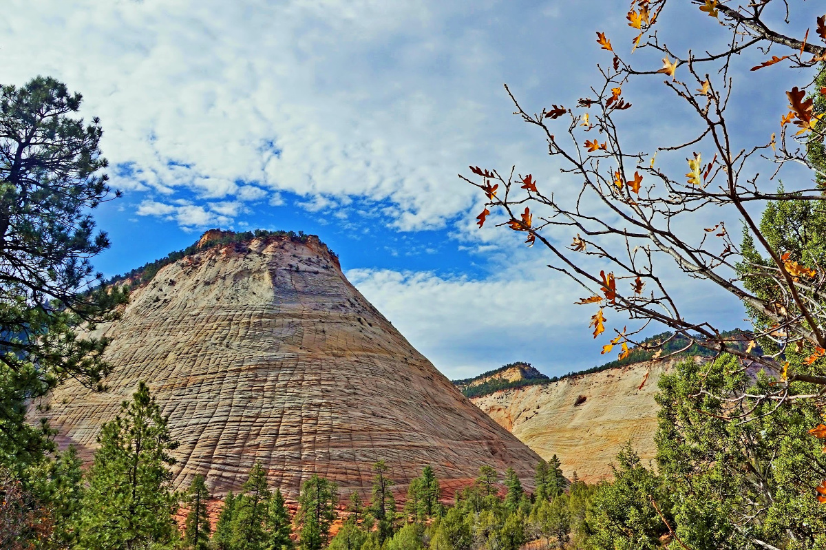 Zion National Park - Checkerboard Mesa