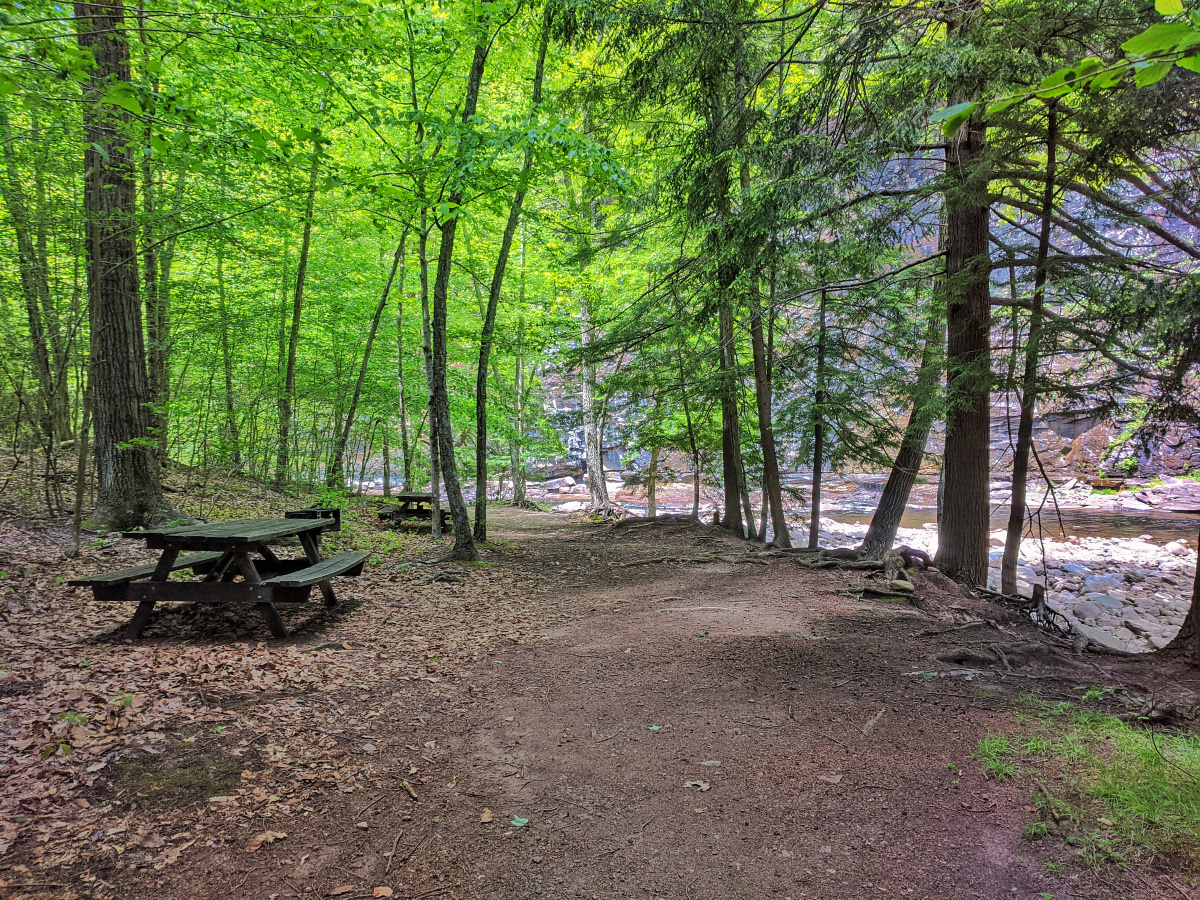 A perfect area for families to enjoy nature at Words End State Park.