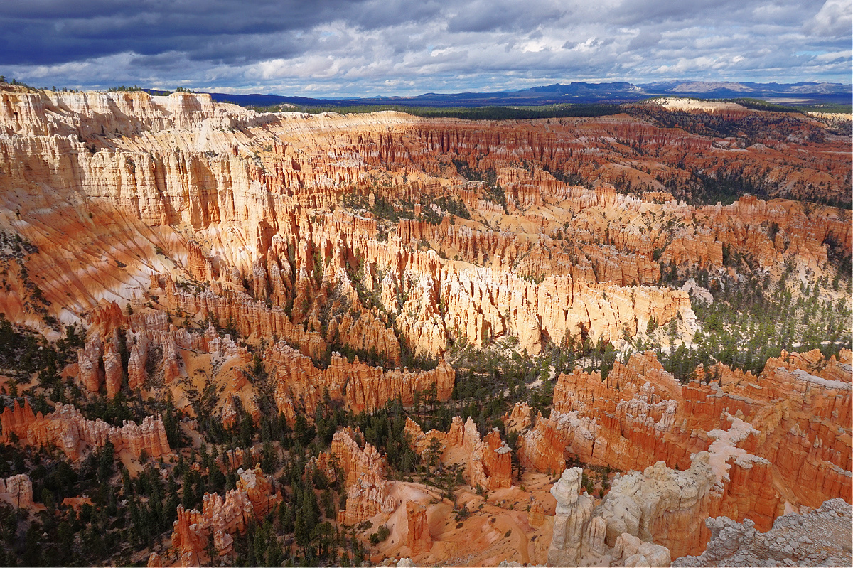 Hoodoos up to horizon at Bryce Canyon National Park.