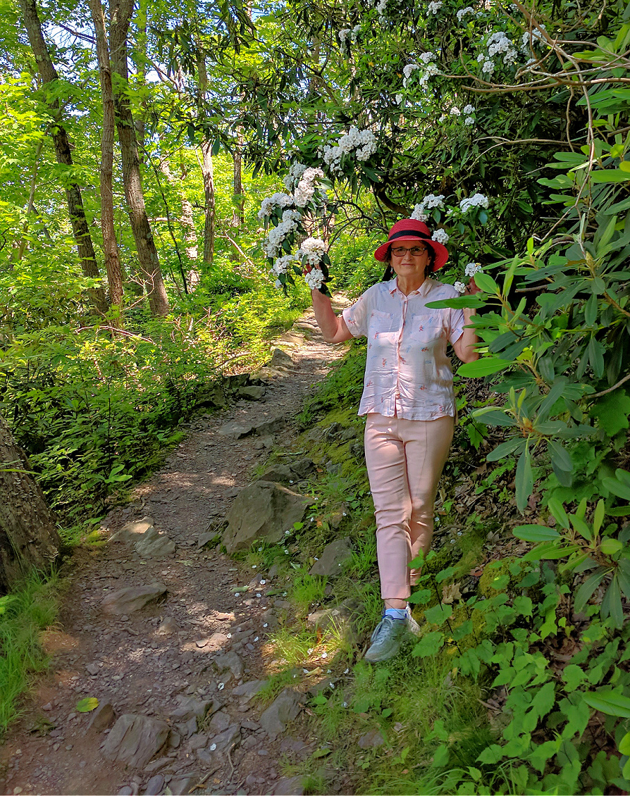 Mount Minsi trail in Delaware Water Gap presents challenges for social distancing.