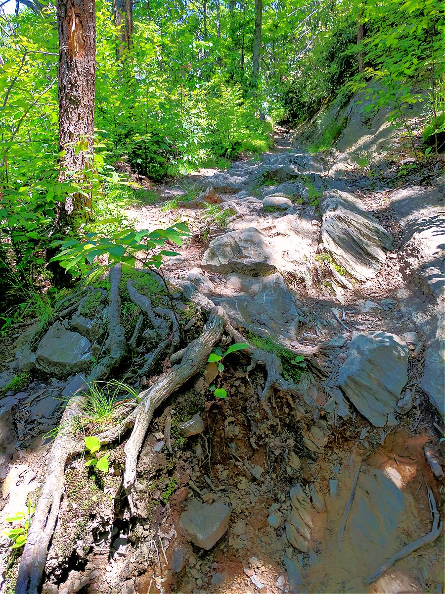Bring good footwear to hike Mount Minsi in Delaware Water Gap.