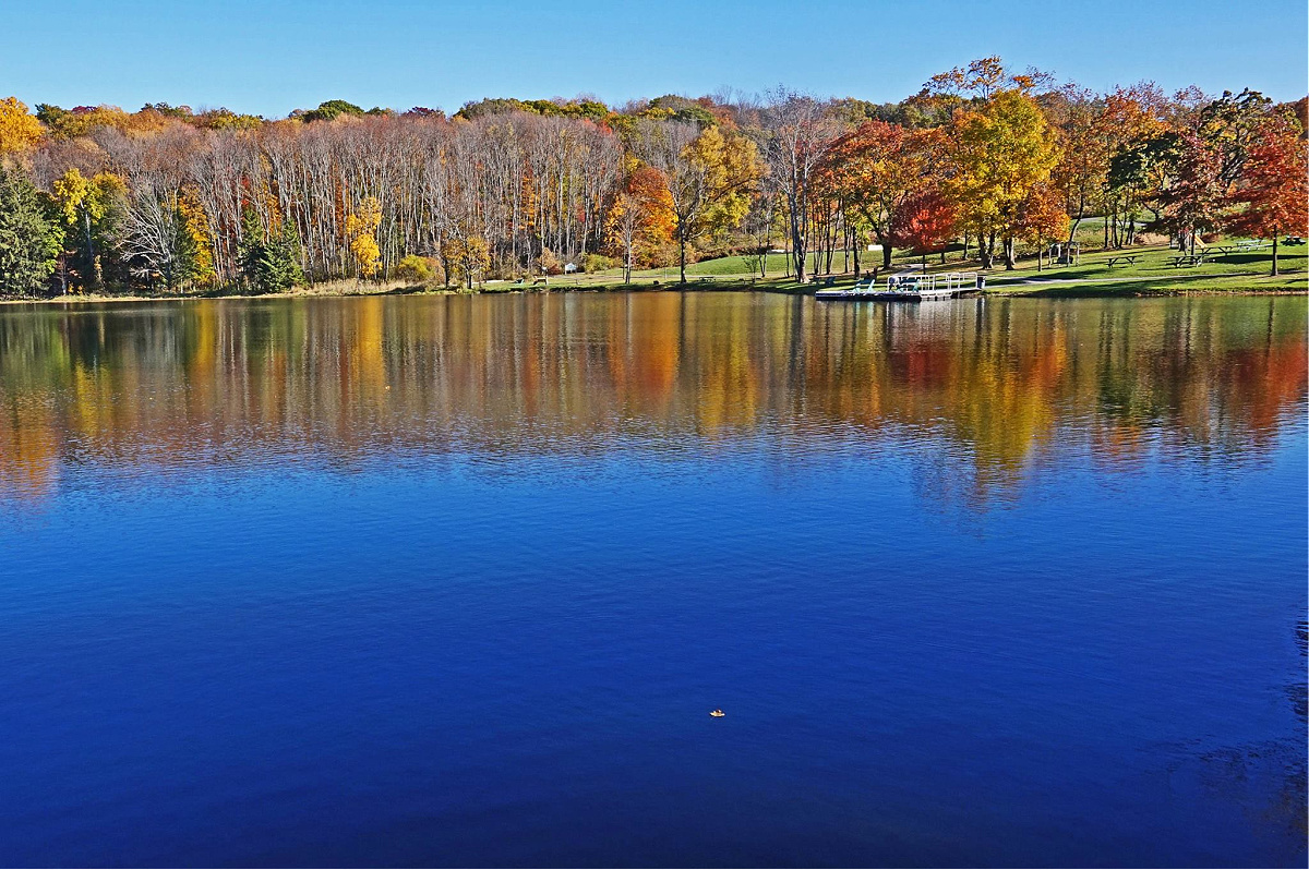 Fall is the best time to visit Lackawanna State Park. Trees reflecting in the lake.