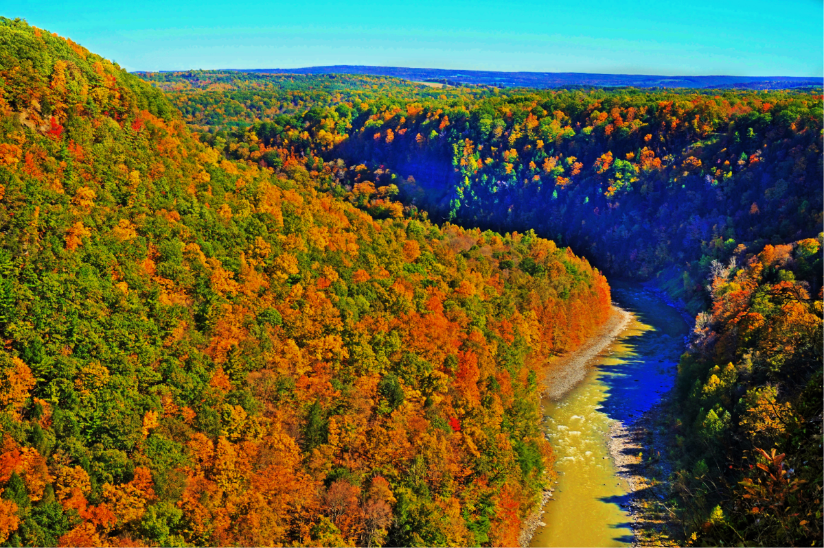 Nature never fails to impress at Letchworth State Park.