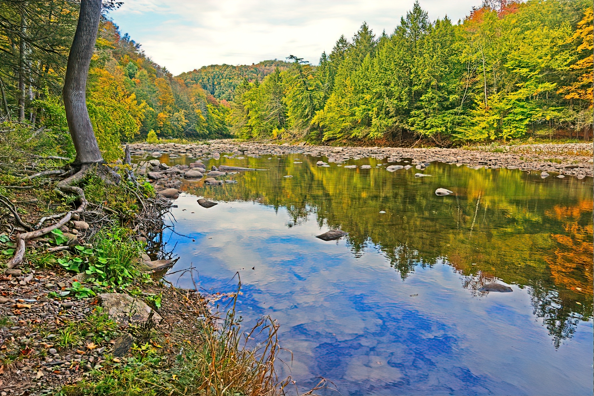 Worlds End State Park also offers easy hiking along the creek.