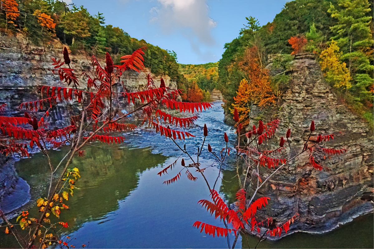 Letchworth State Park looks good in red.