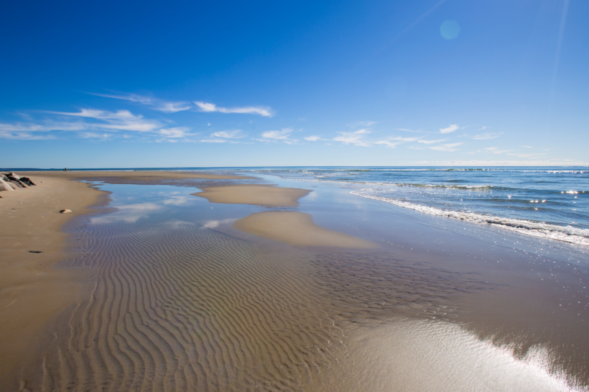Sandy beaches are very much appreciated in Maine, where most of the shore is rocky.
