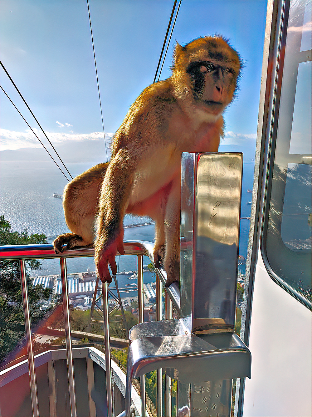 Rock of Gibraltar. Cable car and the monkey/
