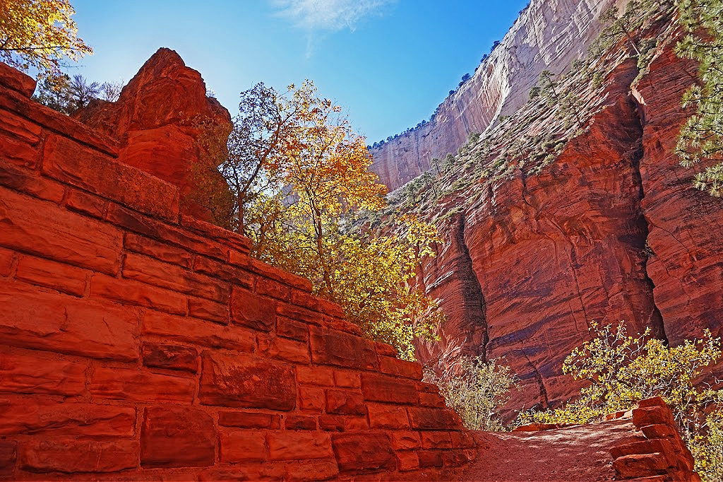 Red rocks on the Angels Landing hiking trail.