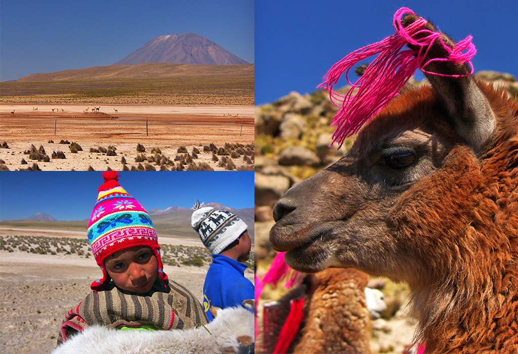 Arequipa naar Chivay - Andes