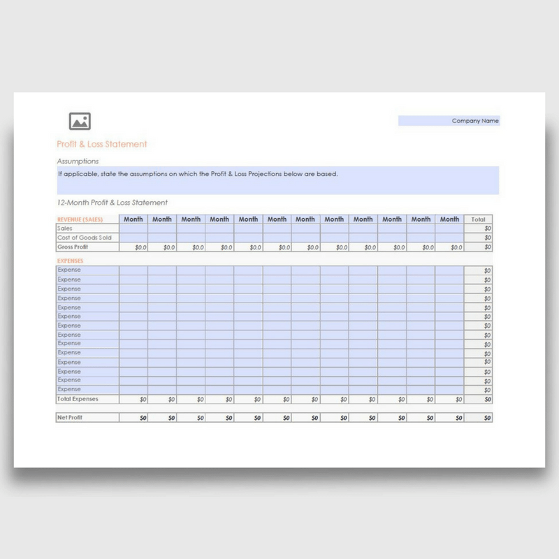 12 Month Profit Loss Statement PDF Form Fully Editable