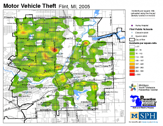 Motor Vehicle Theft (2005)