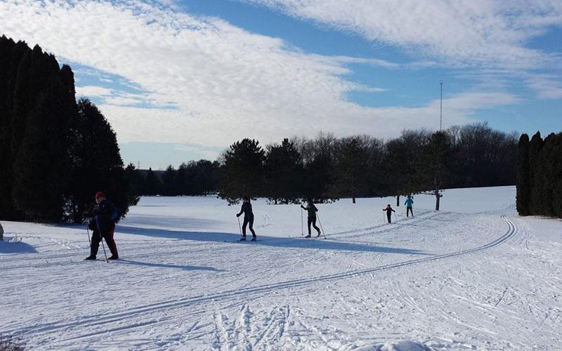 snowy-ski
