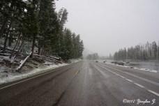 Yellowstone road 1