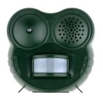 Z Niche Blog Nuisance squirrel sound repellent 102919