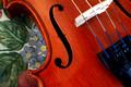 nw violin detail_