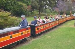 Miniature Railroad