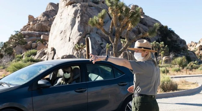 DESPITE COVID CLOSURES, JOSHUA TREE NATIONAL PARK SEES 2.4M IN 2020