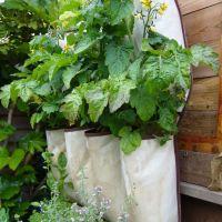 Low Budget tuinieren en decoreren.deel 2