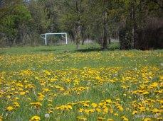 Oude VVZ voetbalveld