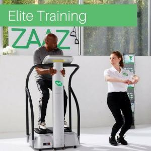 zaaz ergonomic chair egg chairs cheap movement elite training