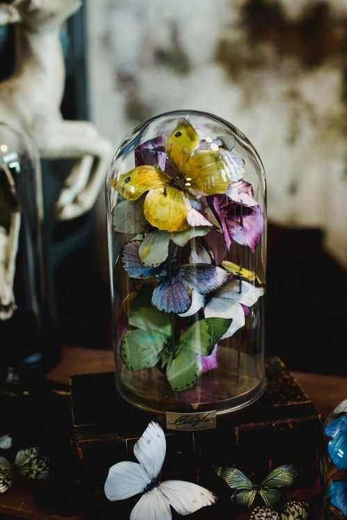 """Нежные и красочные композиции с бабочками под стеклянными куполами — такие же прекрасные, как Вечная роза из """"Красавицы и чудовища"""" (19 фото)"""