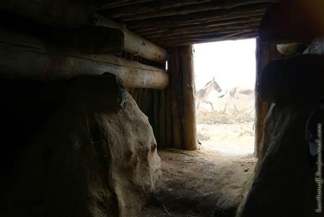 Экскурсия в жилище каменного века ( 21 фото )