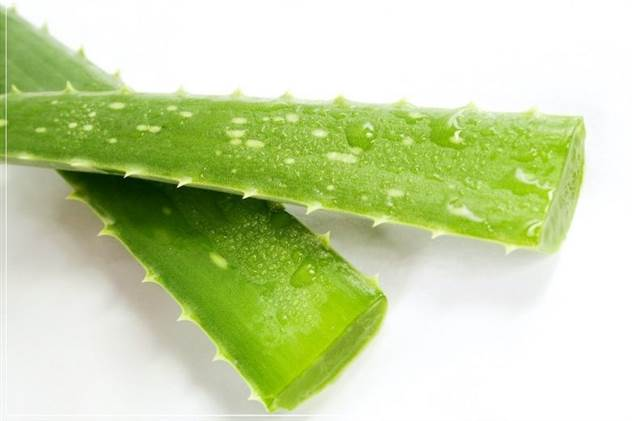 Продукты, которые помогут исцелить организм ( 1 фото )