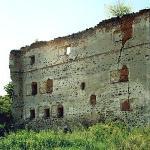 zamek w borowie polskim