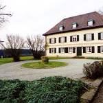 Pałac Hohenstein
