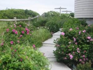 landscape walkways